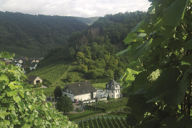 Weingut Deutzerhof von oben